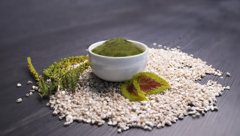 Thai Green 1 kg